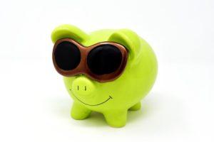 sparen für die Tierpension