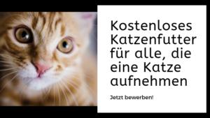 katzenfuttergeschenk
