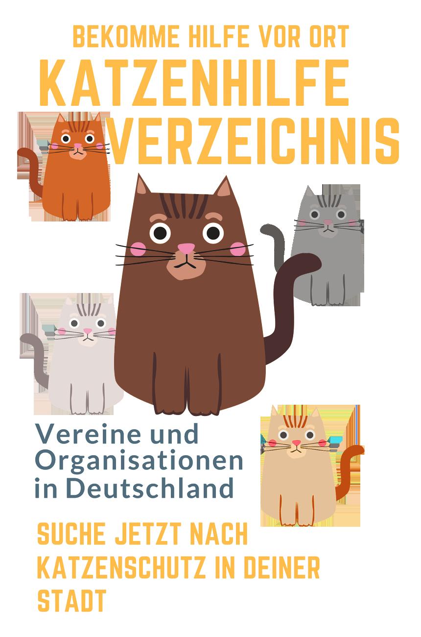 Organisation für katzen