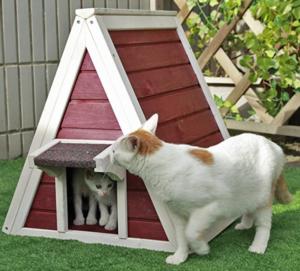 spitzes Katzen Holzhaus