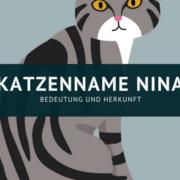 Katzennamen Nina