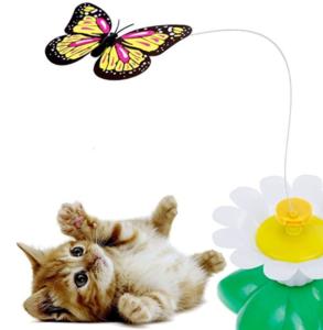 Spieleschmetterlinge für Kätzchen
