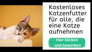 katzenfuttergeschenke abholen